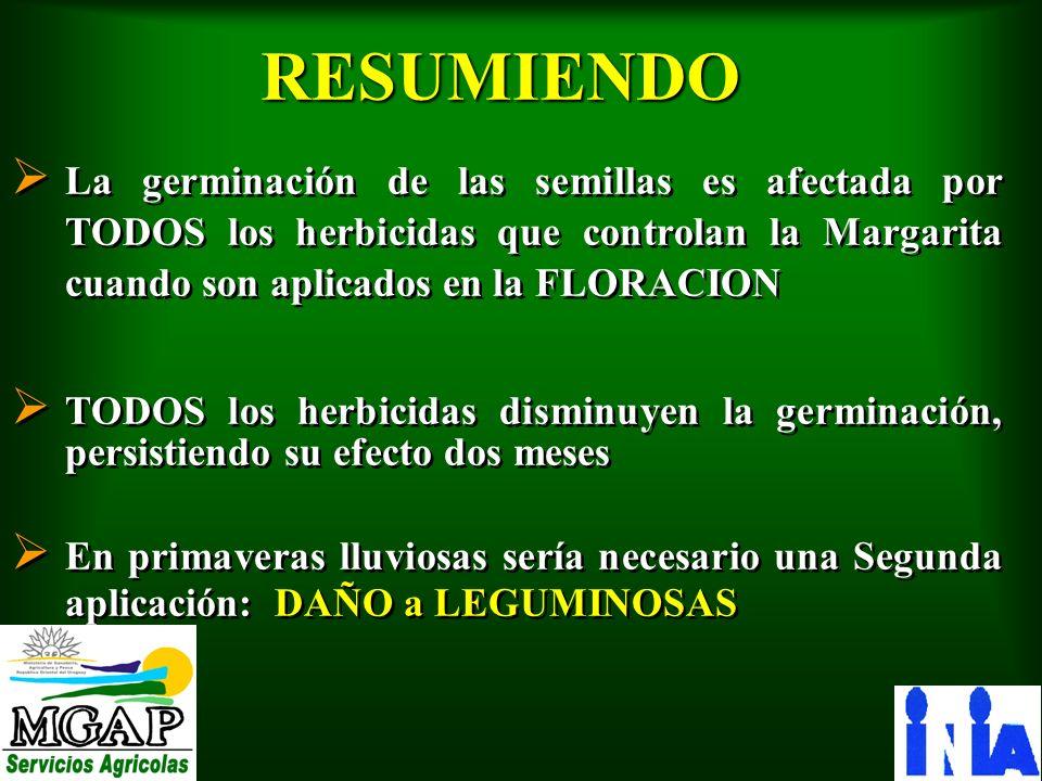 RESUMIENDO Ø La germinación de las semillas es afectada por TODOS los herbicidas que controlan la Margarita cuando son aplicados en la FLORACION Ø TOD