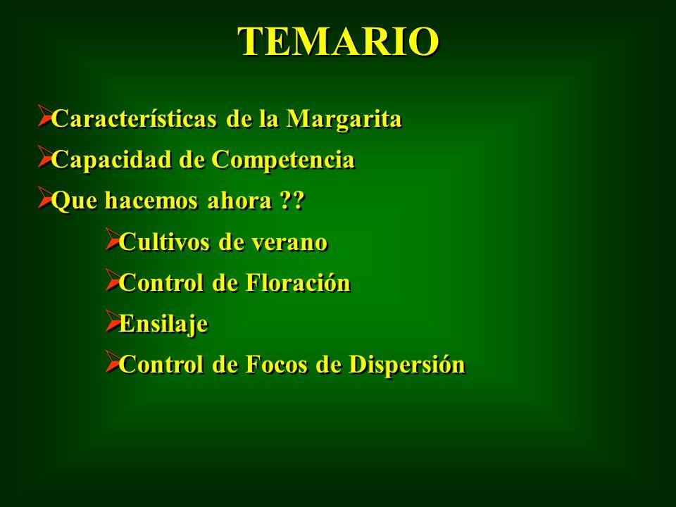 TEMARIO Características de la Margarita Capacidad de Competencia Que hacemos ahora ?? Cultivos de verano Control de Floración Ensilaje Control de Foco