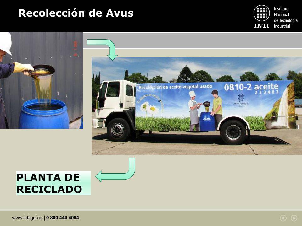 Recolección de Avus PLANTA DE RECICLADO