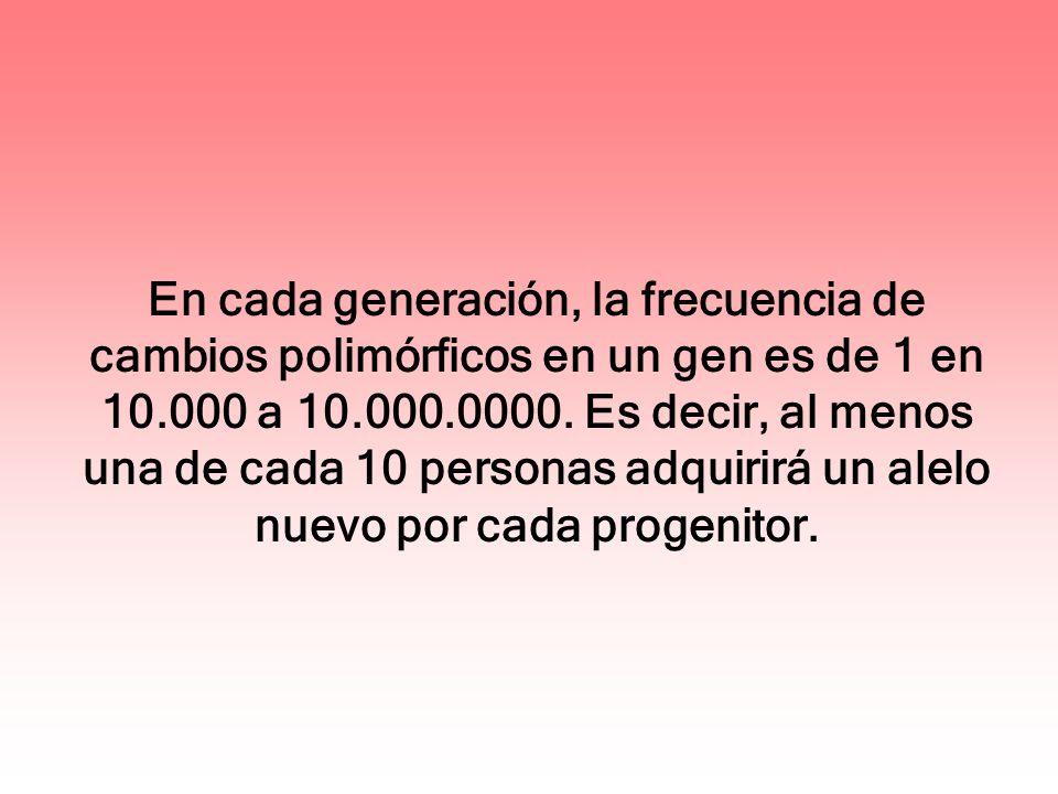 En cada generación, la frecuencia de cambios polimórficos en un gen es de 1 en 10.000 a 10.000.0000. Es decir, al menos una de cada 10 personas adquir
