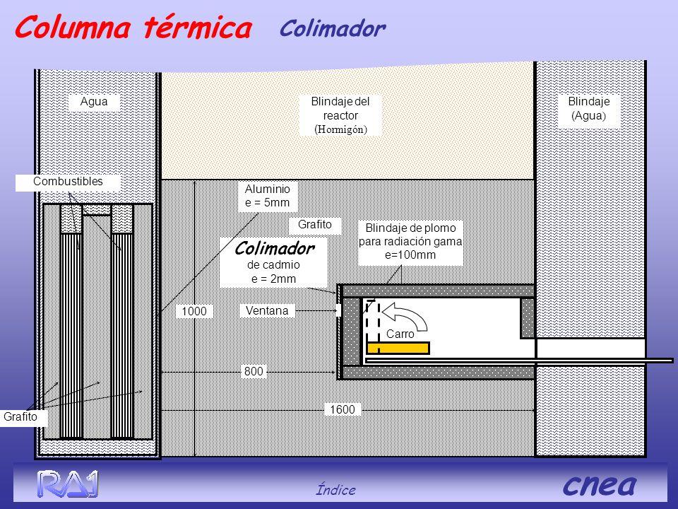 Índice cnea Blindaje del reactor ( Hormigón) Grafito Carro Ventana Colimador de cadmio e = 2mm 800 1600 Agua Blindaje de plomo para radiación gama e=1