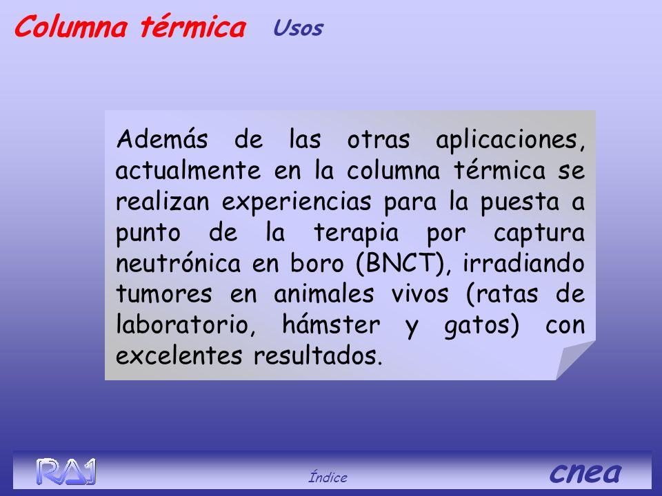 Índice cnea Columna térmica Usos Además de las otras aplicaciones, actualmente en la columna térmica se realizan experiencias para la puesta a punto d