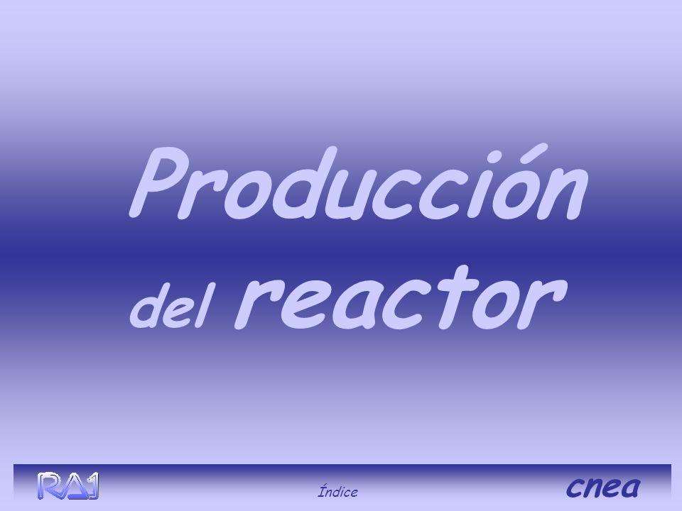 Producción del reactor Índice cnea