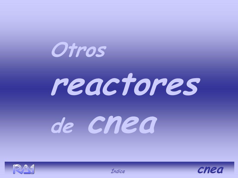 Otros reactores de cnea Índice cnea