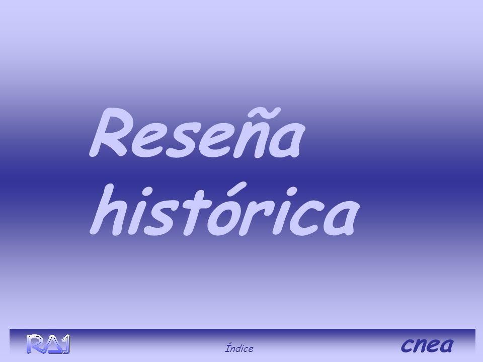 Reseña histórica Índice cnea