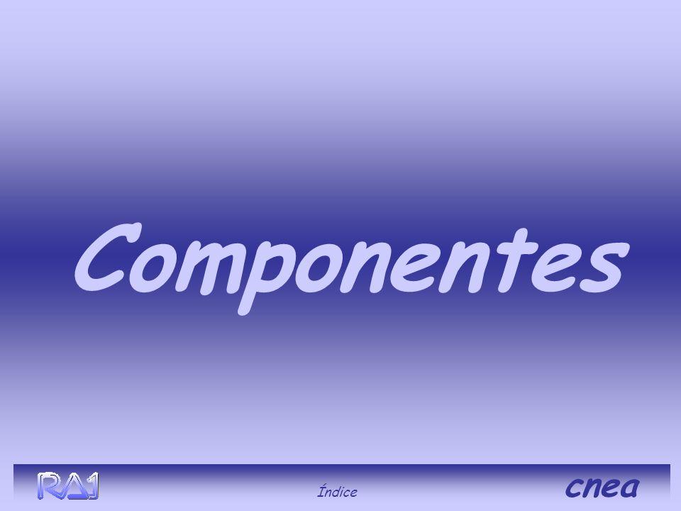 Componentes Índice cnea