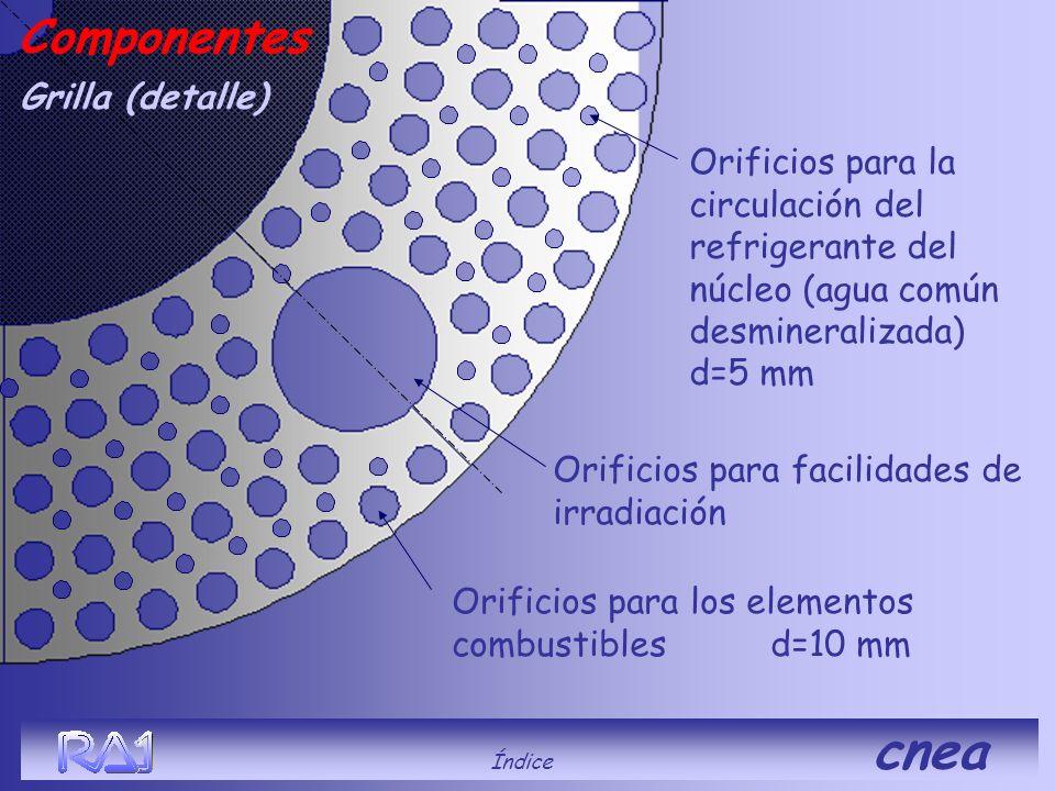 Índice cnea Grilla (detalle) Componentes Orificios para los elementos combustibles d=10 mm Orificios para facilidades de irradiación Orificios para la