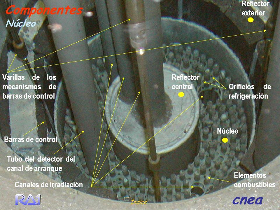 Barras de control Elementos combustibles Reflector central Canales de irradiación. Reflector exterior. Varillas de los mecanismos de barras de control