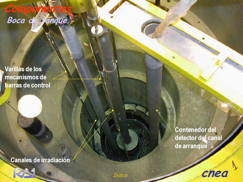 Índice cnea Boca de tanque Componentes Canales de irradiación Varillas de los mecanismos de barras de control Contenedor del detector del canal de arr