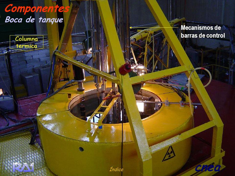 Índice cnea Boca de tanque Componentes Mecanismos de barras de control Columna termica