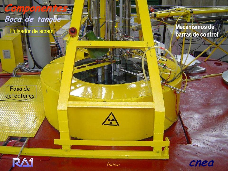 Índice cnea Boca de tanque Componentes Fosa de detectores Pulsador de scram Mecanismos de barras de control