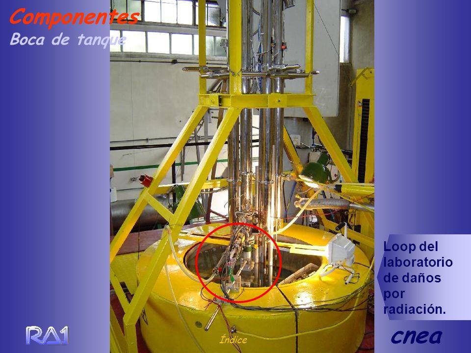 Boca de tanque Índice cnea Componentes Loop del laboratorio de daños por radiación.