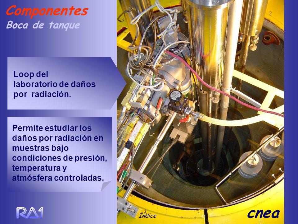 Boca de tanque Índice cnea Componentes Loop del laboratorio de daños por radiación. Permite estudiar los daños por radiación en muestras bajo condicio
