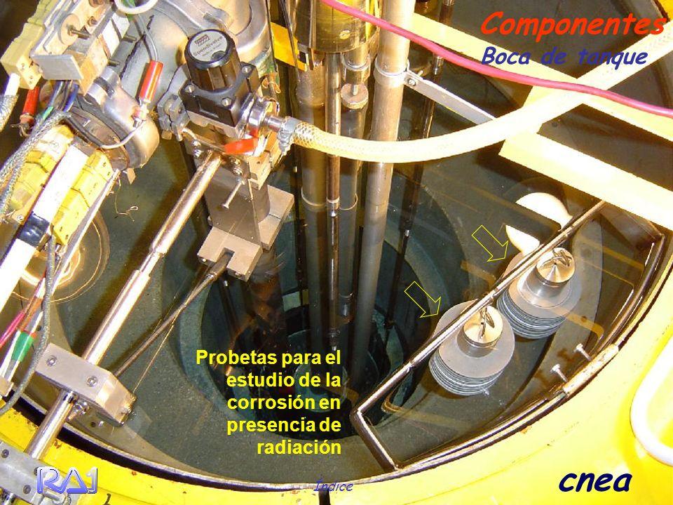 Índice cnea Boca de tanque Componentes Probetas para el estudio de la corrosión en presencia de radiación
