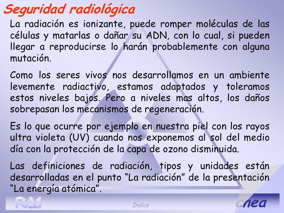 Índice cnea La radiación es ionizante, puede romper moléculas de las células y matarlas o dañar su ADN, con lo cual, si pueden llegar a reproducirse l