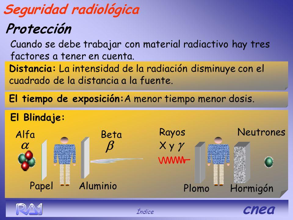 Protección Cuando se debe trabajar con material radiactivo hay tres factores a tener en cuenta. El Blindaje: Alfa Papel Beta Neutrones Aluminio PlomoH