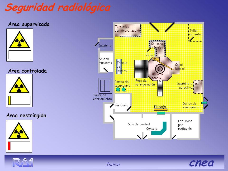 Seguridad radiológica Area supervisada Area restringida Area controlada Blindaje Índice cnea Depósito Taller caliente Blindaje Columna térmica Vestuar