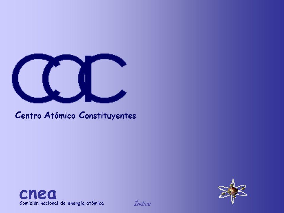Corte del reactor Índice cnea Componentes 2755 1000 660 295 350 d 2770 100 d 340 d 367 Blindaje radial de hormigón Blindaje radial de plomo d 507 d 597 d 962 100 Reflector radial de grafito (ext.) Reflector radial de grafito (int.) Elemento combustible Reflector central de grafito Haz rápido Fuente de neutrones