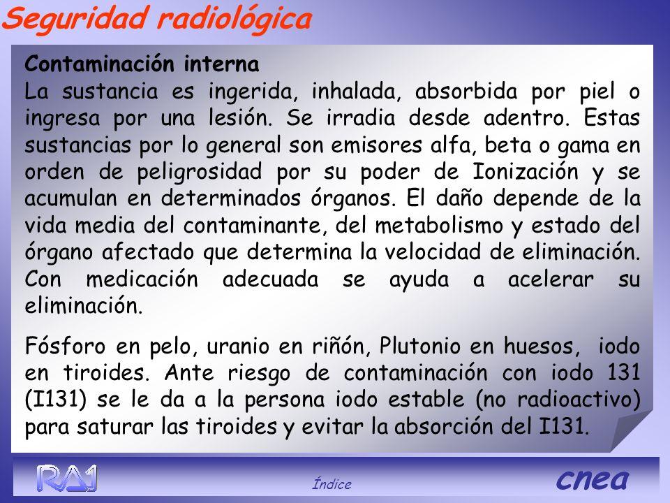 Seguridad radiológica Contaminación interna La sustancia es ingerida, inhalada, absorbida por piel o ingresa por una lesión. Se irradia desde adentro.