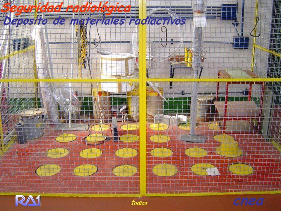 Seguridad radiológica Deposito de materiales radiactivos Índice cnea