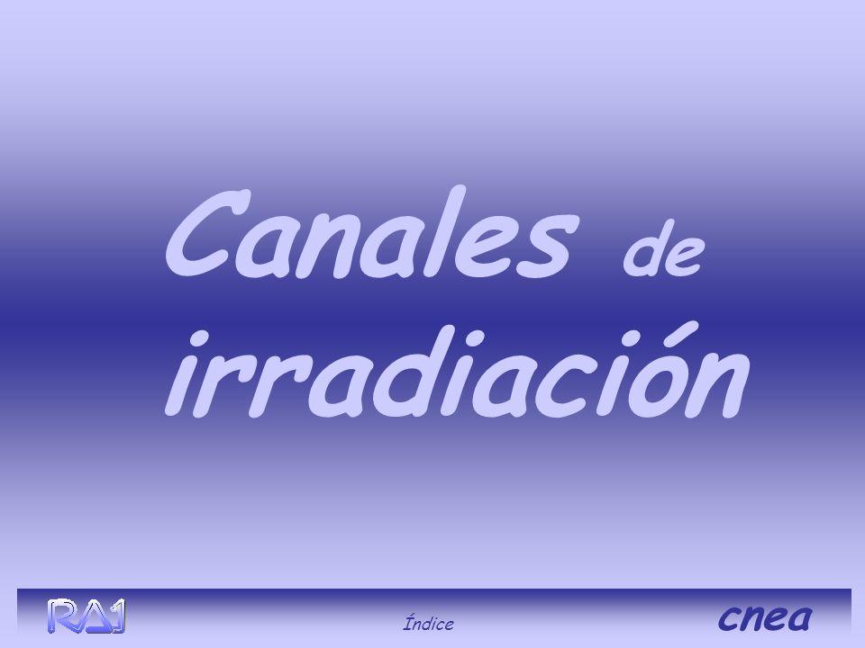Canales de irradiación Índice cnea