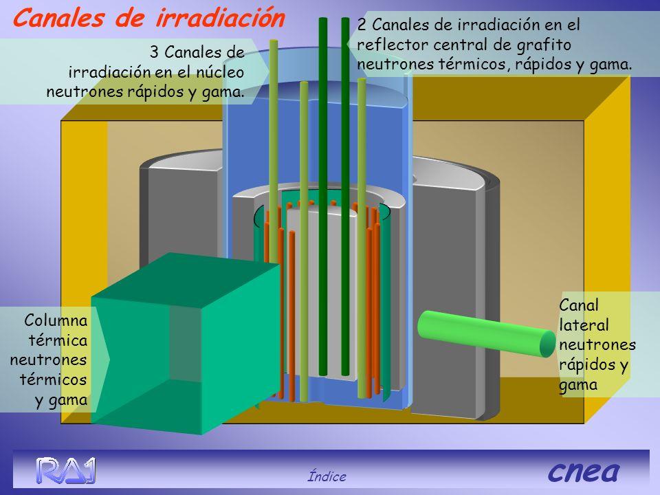 Canales de irradiación Índice cnea 3 Canales de irradiación en el núcleo neutrones rápidos y gama. 2 Canales de irradiación en el reflector central de