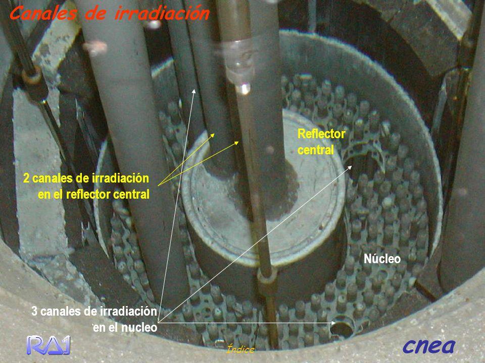 Reflector central 3 canales de irradiación en el nucleo Índice cnea Canales de irradiación Núcleo 2 canales de irradiación en el reflector central