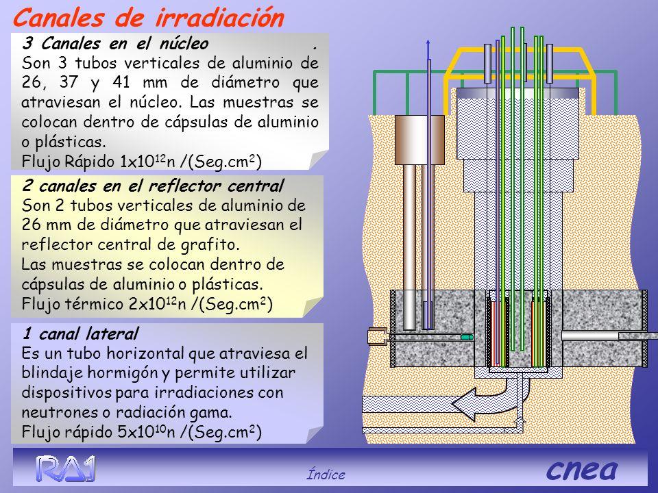 Índice cnea 2 canales en el reflector central Son 2 tubos verticales de aluminio de 26 mm de diámetro que atraviesan el reflector central de grafito.