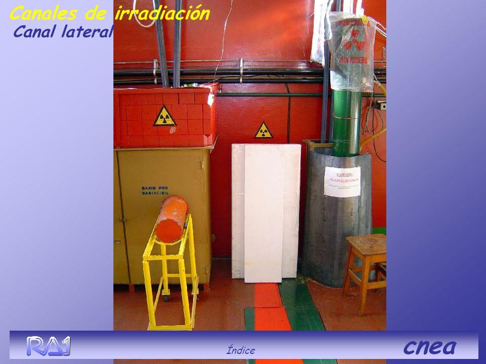Índice cnea Canales de irradiación Canal lateral