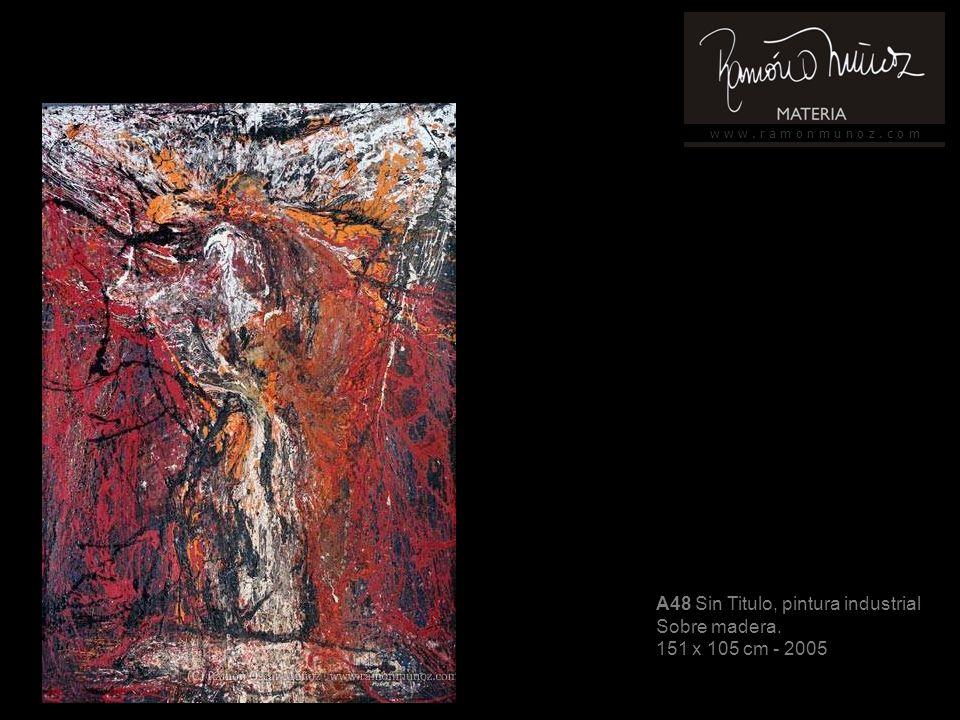 w w w. r a m o n m u n o z. c o m A22 Sin título, pintura industrial Sobre madera 92 x 65 cm - 2006