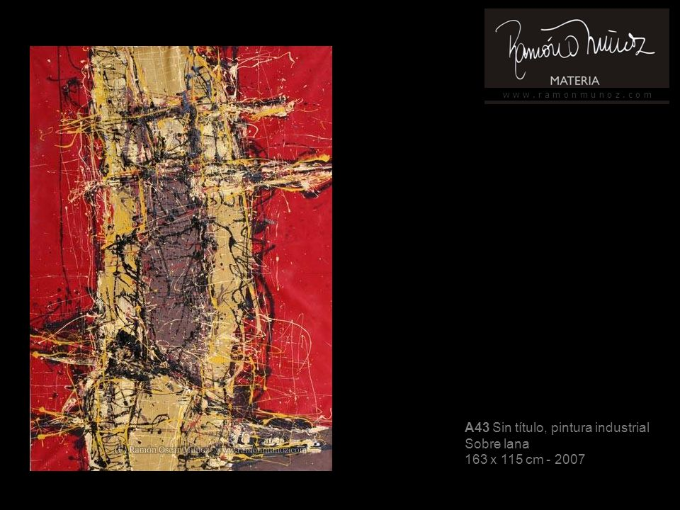 w w w. r a m o n m u n o z. c o m A43 Sin título, pintura industrial Sobre lana 163 x 115 cm - 2007