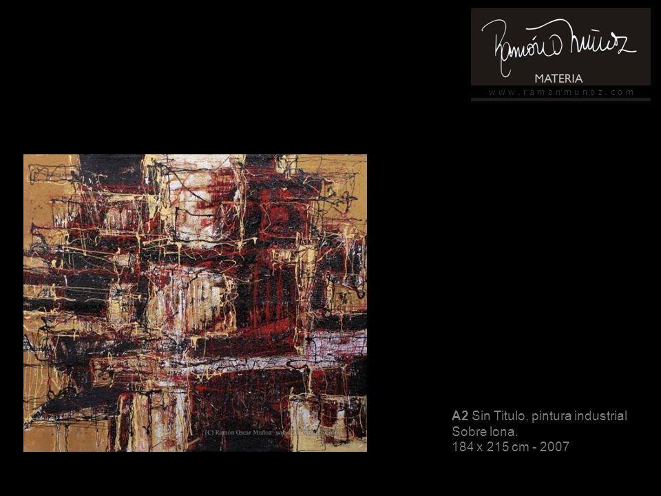 w w w. r a m o n m u n o z. c o m A16 Sin título, pintura industrial Sobre tela 155 x 103 cm - 2007