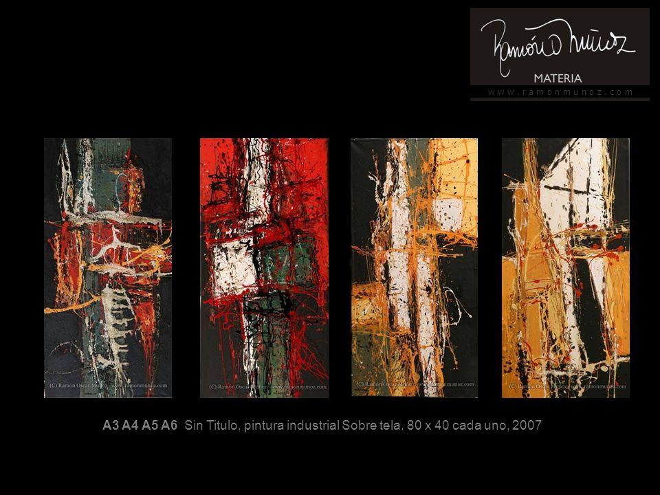 w w w. r a m o n m u n o z. c o m A3 A4 A5 A6 Sin Titulo, pintura industrial Sobre tela.