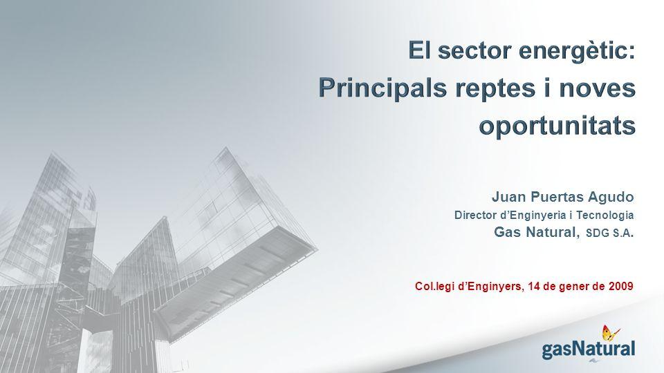 Juan Puertas Agudo Director dEnginyeria i Tecnologia Gas Natural, SDG S.A.