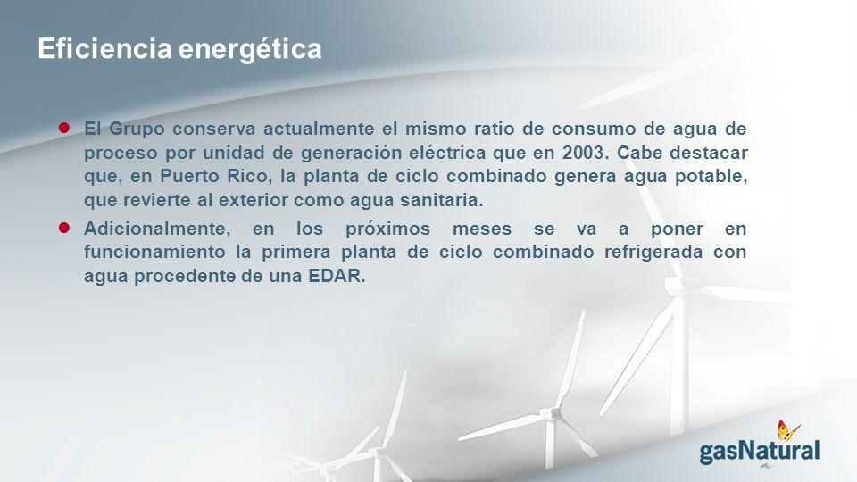 El Grupo conserva actualmente el mismo ratio de consumo de agua de proceso por unidad de generación eléctrica que en 2003.