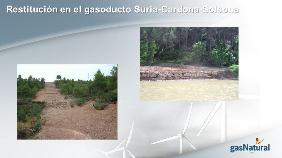 Restitución en el gasoducto Suria-Cardona-Solsona