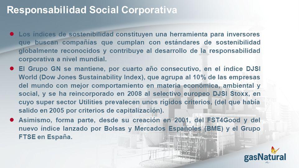 Responsabilidad Social Corporativa Los índices de sostenibilidad constituyen una herramienta para inversores que buscan compañías que cumplan con estándares de sostenibilidad globalmente reconocidos y contribuye al desarrollo de la responsabilidad corporativa a nivel mundial.