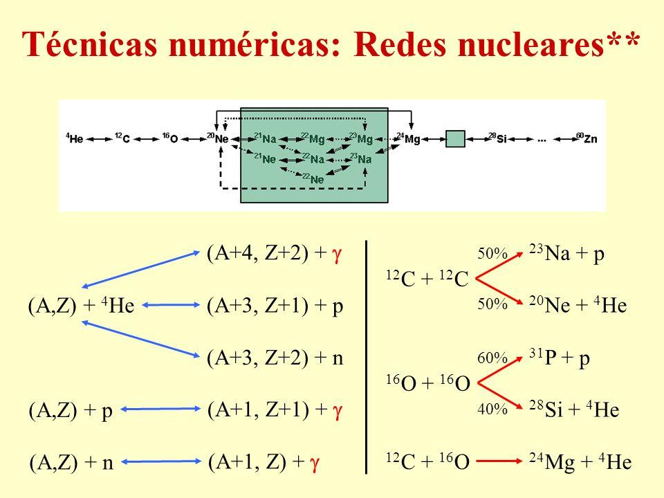(A,Z) + p (A+1, Z+1) + (A,Z) + n (A+1, Z) + (A,Z) + 4 He (A+3, Z+1) + p (A+3, Z+2) + n (A+4, Z+2) + 12 C + 16 O 24 Mg + 4 He 12 C + 12 C 23 Na + p 20