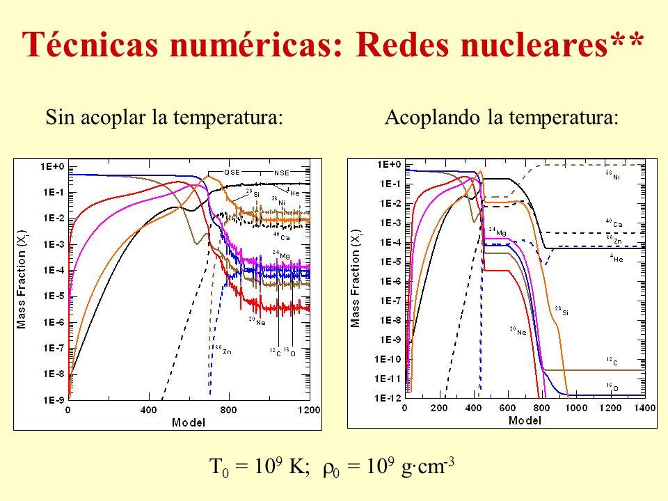 Sin acoplar la temperatura:Acoplando la temperatura: T 0 = 10 9 K; 0 = 10 9 g·cm -3 Técnicas numéricas: Redes nucleares**
