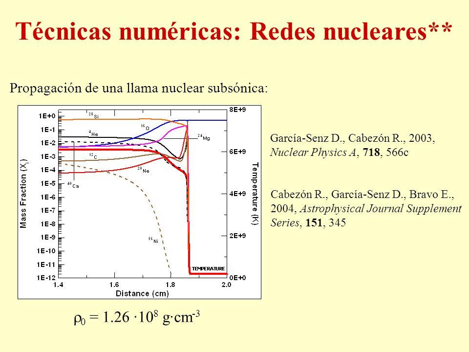 0 = 1.26 ·10 8 g·cm -3 Propagación de una llama nuclear subsónica: García-Senz D., Cabezón R., 2003, Nuclear Physics A, 718, 566c Cabezón R., García-S
