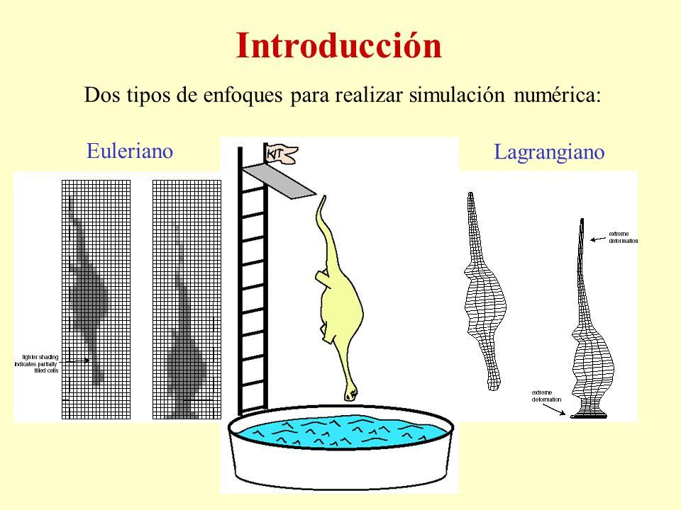 Introducción Dos tipos de enfoques para realizar simulación numérica: Euleriano Lagrangiano