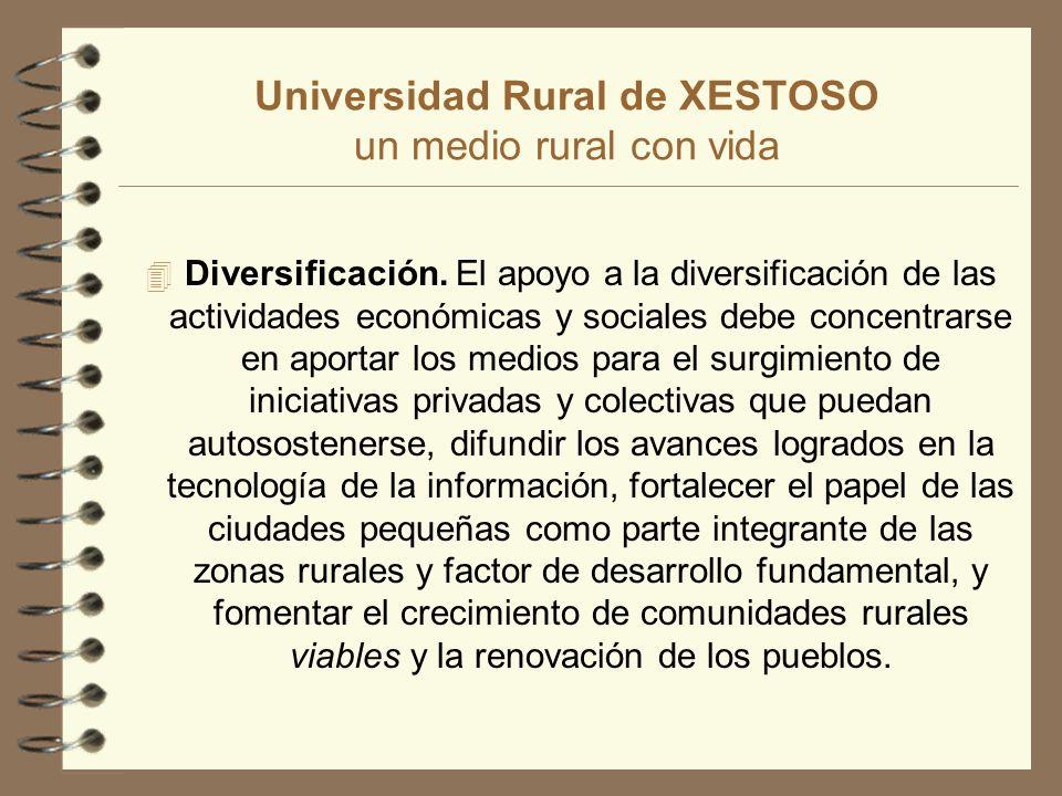 Universidad Rural de XESTOSO un medio rural con vida 4 Diversificación.