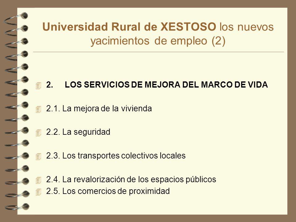 Universidad Rural de XESTOSO los nuevos yacimientos de empleo (2) 4 2.LOS SERVICIOS DE MEJORA DEL MARCO DE VIDA 4 2.1.