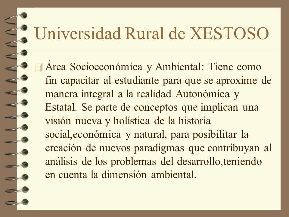 Universidad Rural de XESTOSO 4 Área Socioeconómica y Ambiental: Tiene como fin capacitar al estudiante para que se aproxime de manera integral a la realidad Autonómica y Estatal.