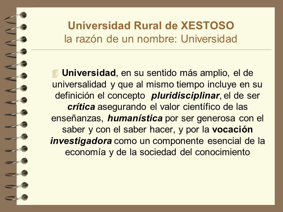 Universidad Rural de XESTOSO 4 Área Socioeconómica y Ambiental: Las Asignaturas básicas de esta área son: Seminario de Problemas Rurales Gallegos; Sistemas Naturales y Artificiales y Teorías del Desarrollo Económico