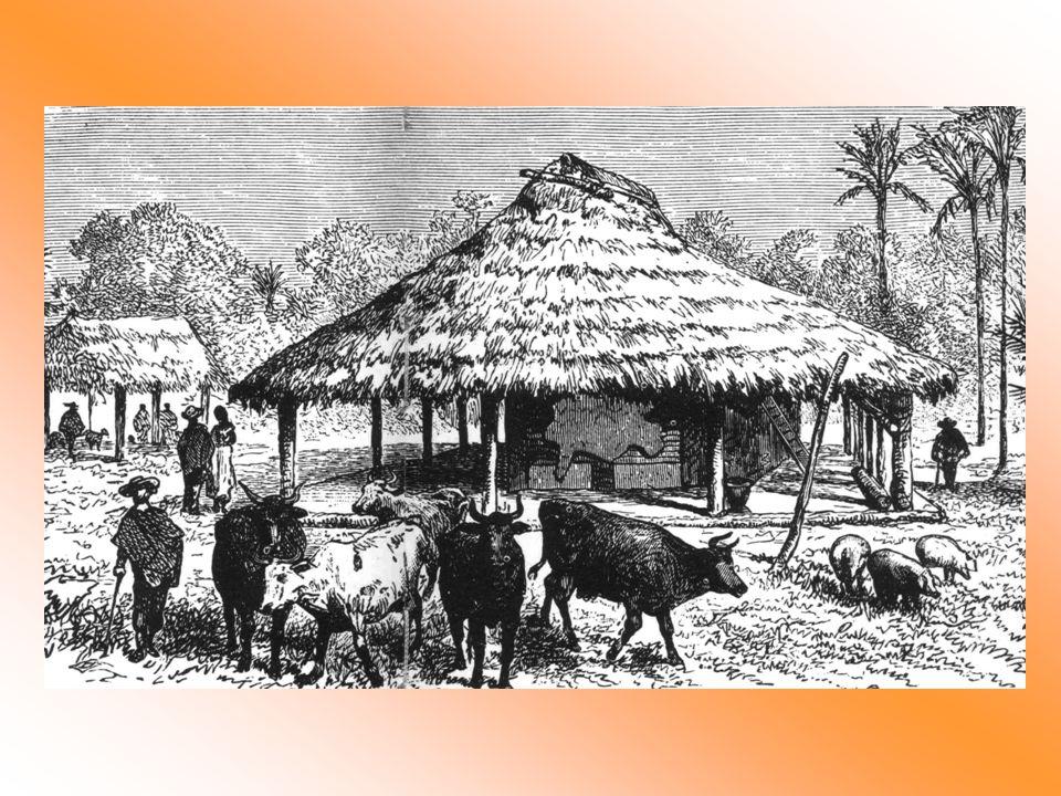 Hay varias clases de cuero: hay uno que es delgado de natural...hay cueros que son vidriosos, eso depende del tipo de ganado de la región.