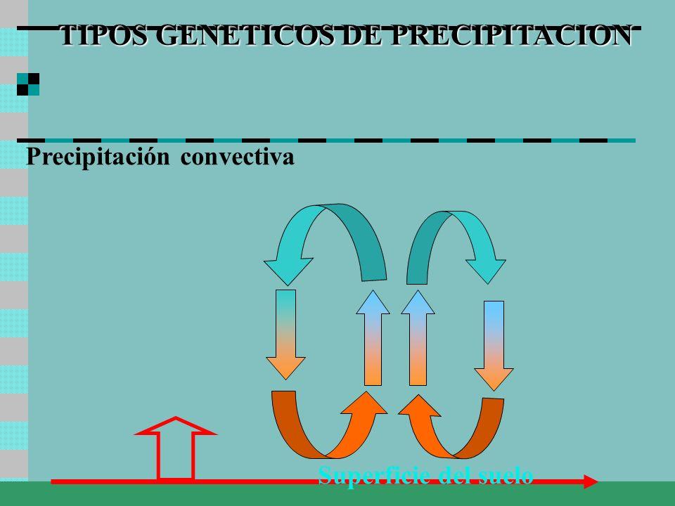 TIPOS GENETICOS DE PRECIPITACION Precipitación convectiva Superficie del suelo