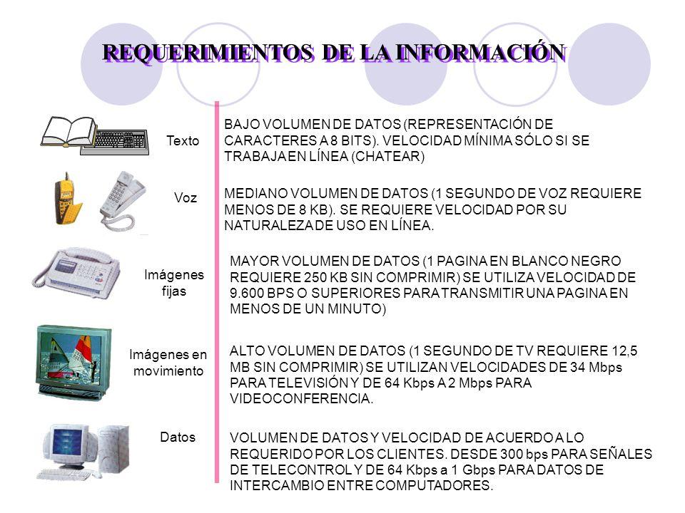REQUERIMIENTOS DE LA INFORMACIÓN Texto BAJO VOLUMEN DE DATOS (REPRESENTACIÓN DE CARACTERES A 8 BITS).