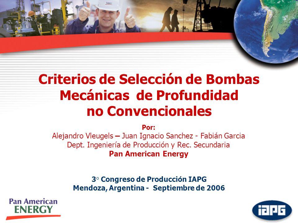 Criterios de Selección de Bombas Mecánicas de Profundidad no Convencionales 3° Congreso de Producción IAPG Mendoza, Argentina - Septiembre de 2006 Por: Alejandro Vleugels – Juan Ignacio Sanchez - Fabián Garcia Dept.