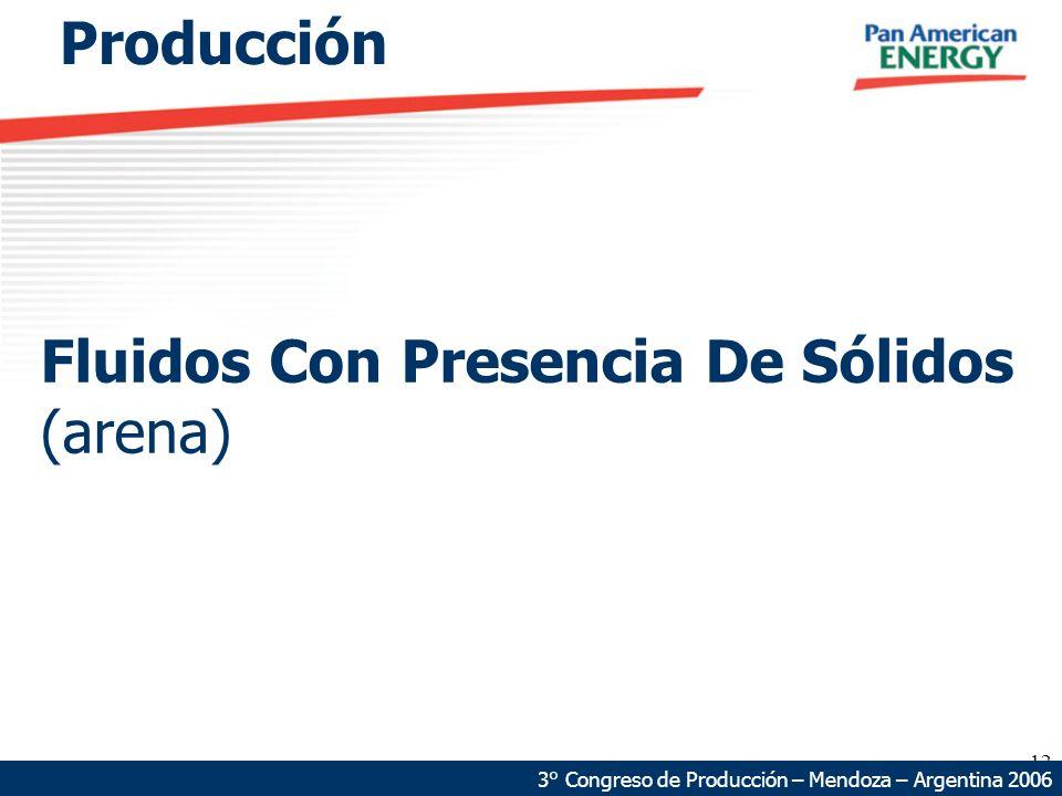 12 Fluidos Con Presencia De Sólidos (arena) 3° Congreso de Producción – Mendoza – Argentina 2006 Producción